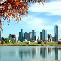 Dallas Landscape