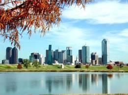 Dallas Landscape