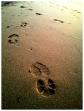 Miami sand